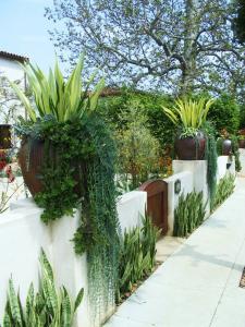 1082fc4d93c7521660aaa661625cd149--backyard-garden-ideas-balcony-garden